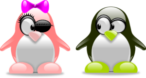 pingvinpárocska