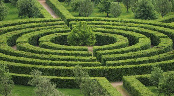 Sövény labirintus, ami a végtelen választás lehetőségeit szimbolizálja